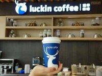 假如瑞幸咖啡面临集体诉讼时,赔偿金额可能高达112亿美元之多。毫无疑问,瑞幸咖啡根本不可能拿出这么多钱赔偿,申请破产或成唯一选择【重庆火锅底